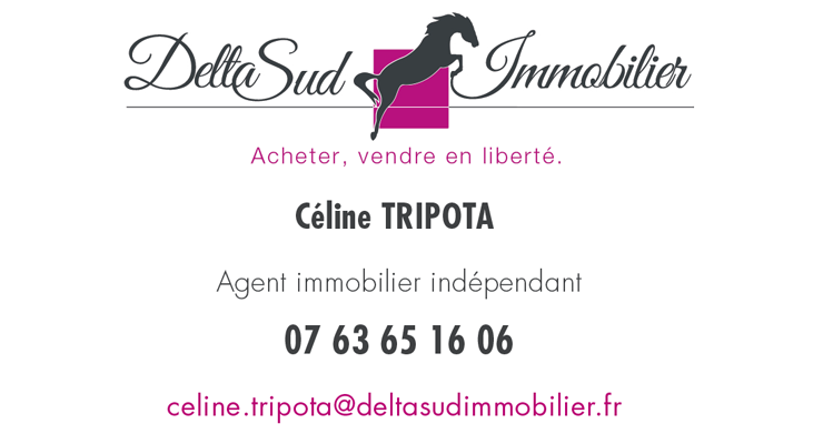 Delta Sud Immobilier